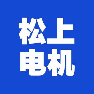 江苏松上电机有限公司招聘行政文员